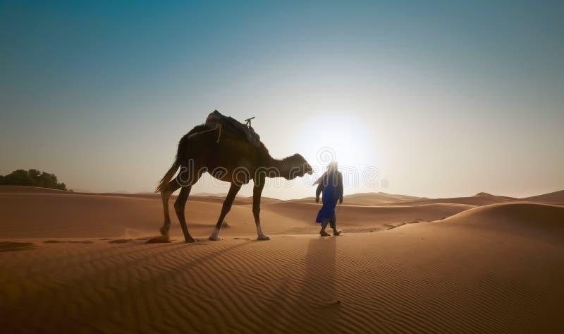 Photo floue - image abstraite pour l'arrière-plan Un homme à dos de chameau voyage à travers le désert sous le feu des projecteur images stock