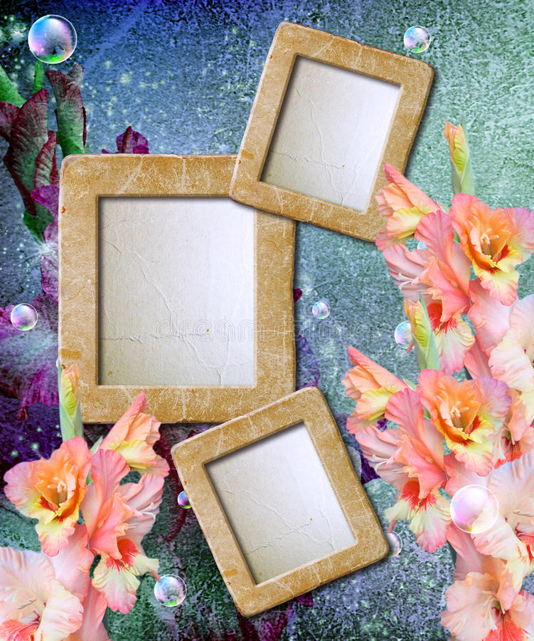 Photo frame with gladiolus vector illustration