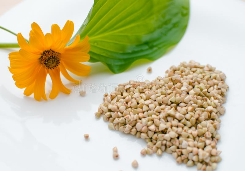 Photo of germinated buckwheat on a white plate next to a green leaf and a yellow flower royalty free stock photos