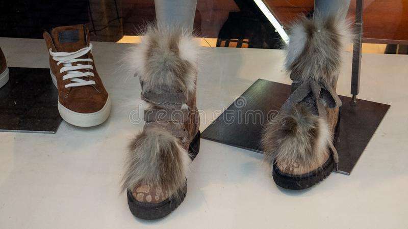 Photo of a goat-like shoe. Photo showcases. Women`s shoes in the style of an animal stock photo