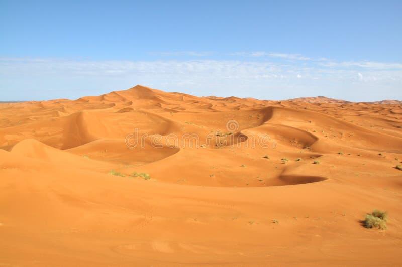 Sahara desert stock image