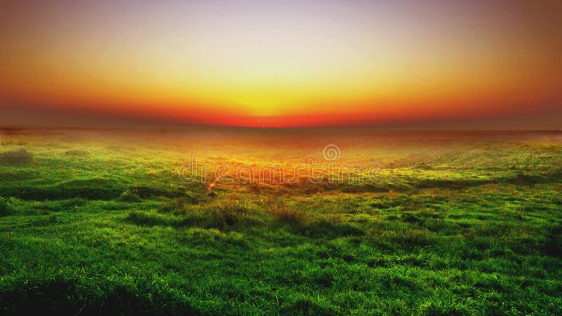 Photo of Green Grass Field royalty free stock images