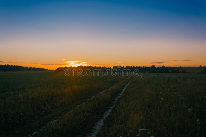 Photo of Green Grass Field during Golden Hours royalty free stock image