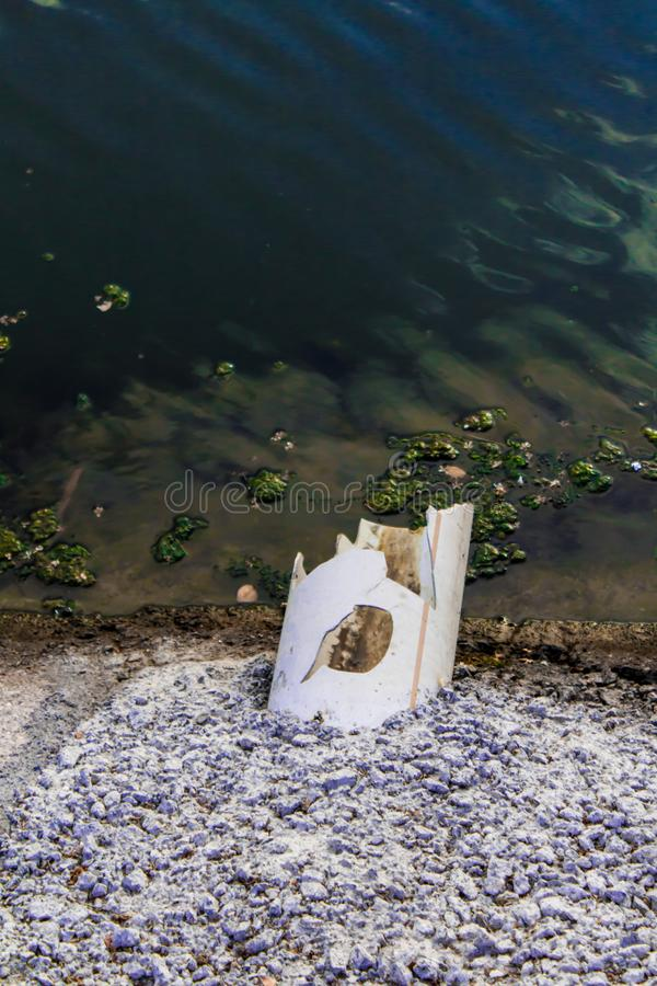 A Pipe Above Water at Swamp Area royalty free stock photos