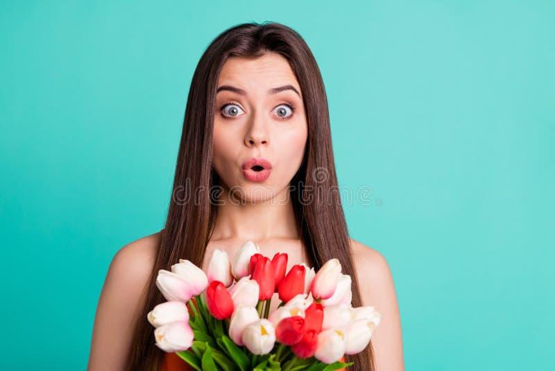 Photo haute étroite belle la stupéfiant elle dame a choqué l'anniversaire rouge blanc de surprise de tulipes de fleurs fraîches d images libres de droits