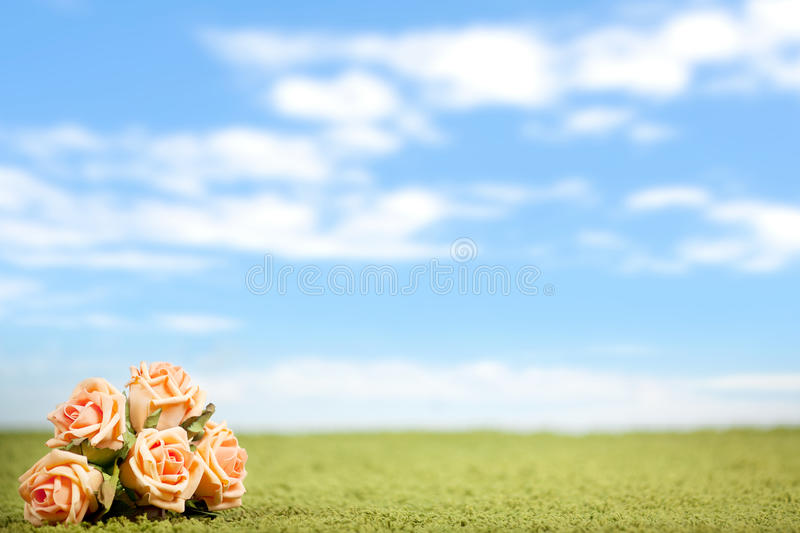 Photo-illustration of roses royalty free stock image