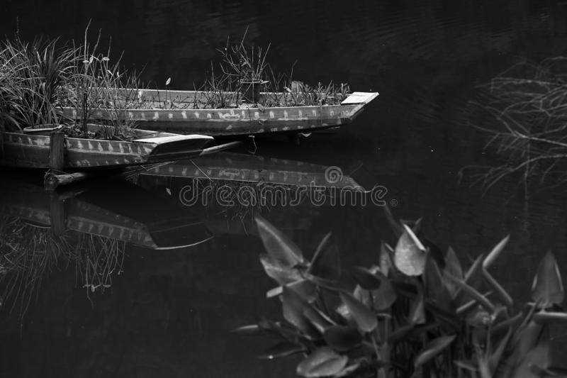Little egret on a chinese traditional fishing boat on a lake, park, Shenzhen, China,black and white royalty free stock images