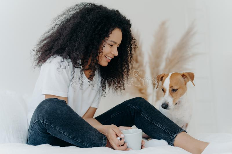 Photo of lovely curly haired female dog owner looks with smile at animal, holds cup of tea, sits on bed in white spacious bedroom. Expresses love to animal stock photography