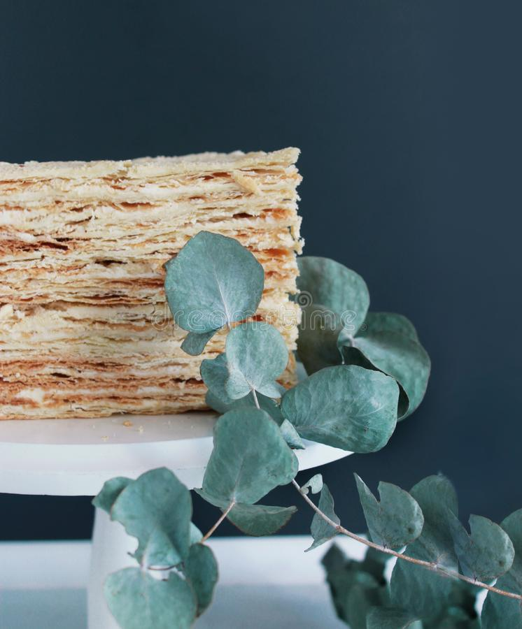 Cake Napoleon I leafing eucalyptus. Photo is made in Ukraine. lviv oblast. Cake Napoleon I leafing eucalyptus royalty free stock image
