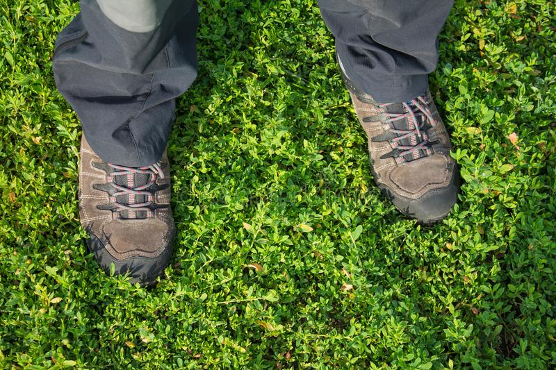 Photo of man feet in hiking boots on green grass background.  stock images