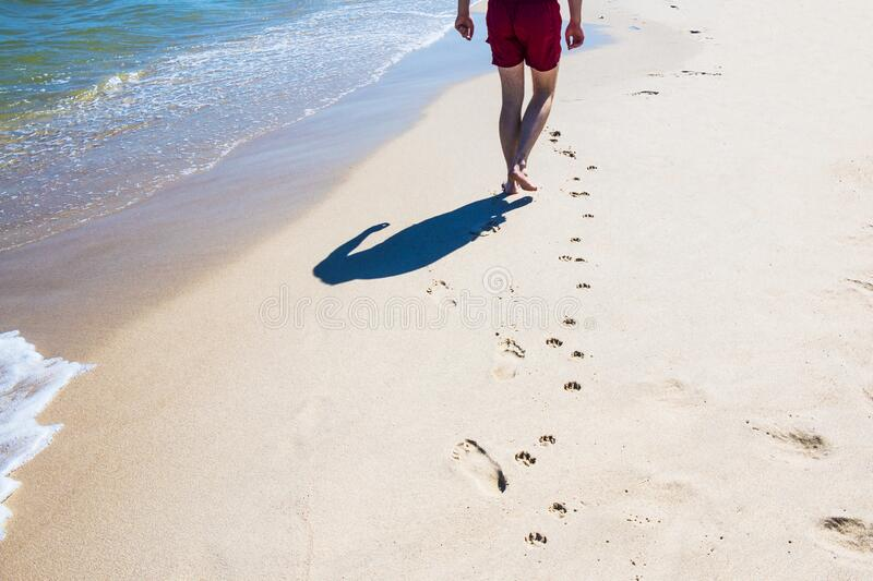 Photo of man walking on the hot sandy beach leaving footsteps next to the dog`s footprints royalty free stock photo