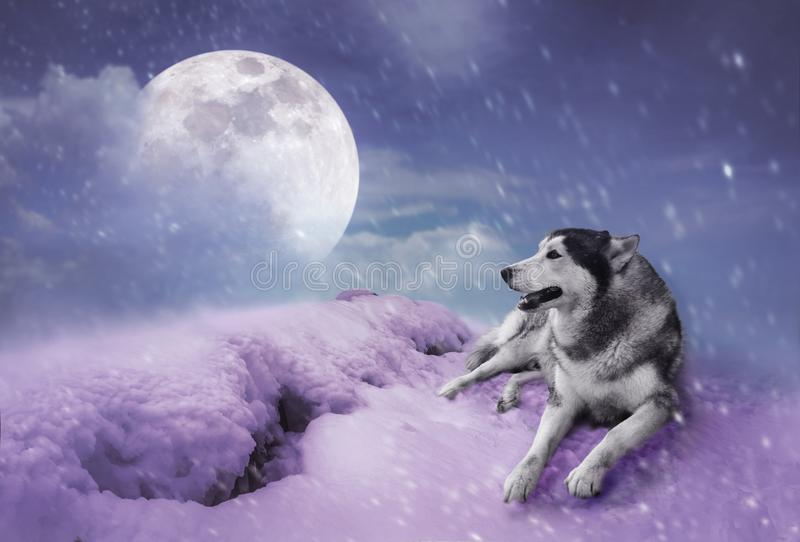 Landscape at snowfall with super moon. Serenity nature background. Photo Manipulation. Landscape at snowfall with super moon. Majestic night with full moon on stock illustration