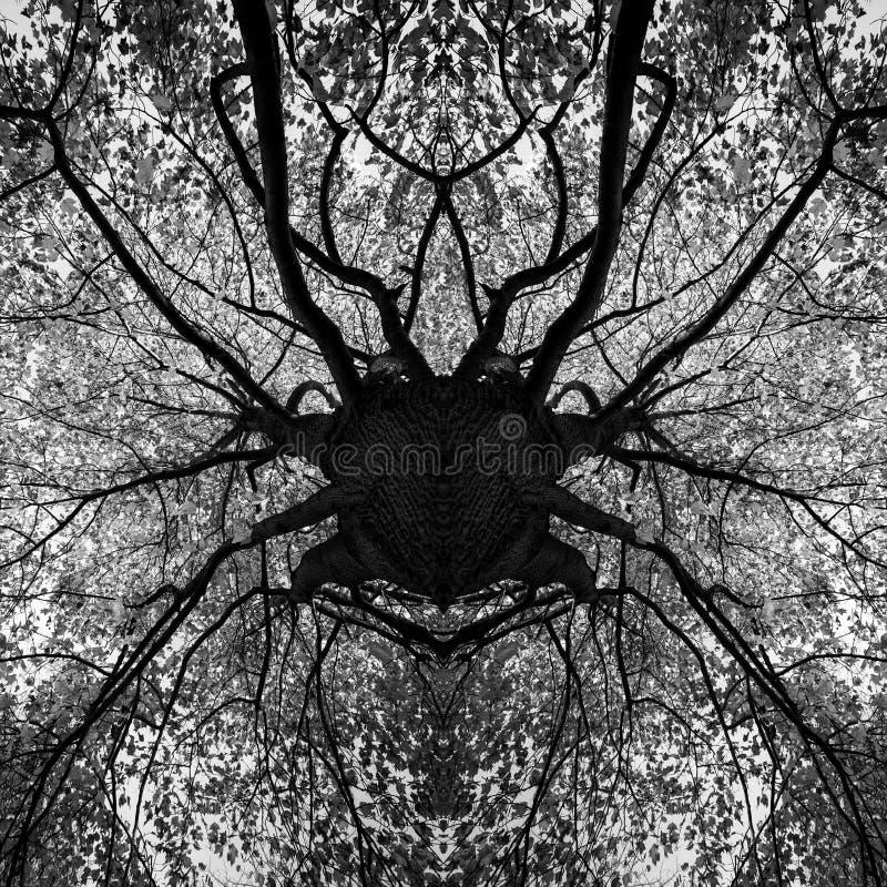 Photo manipulation - tree black and white mandala. Abstract art stock images