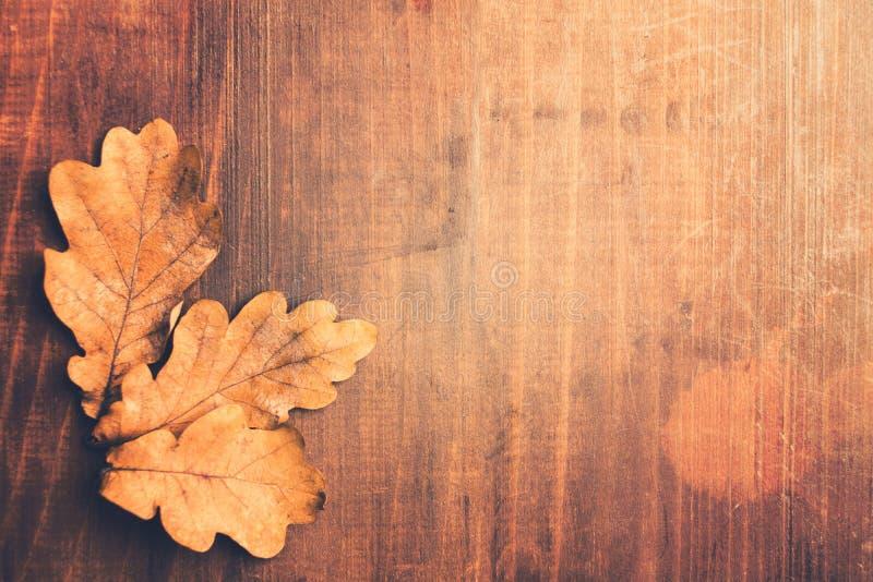 Photo modifiée la tonalité d'automne avec les feuilles en bois de chêne au-dessus de la table en bois image stock