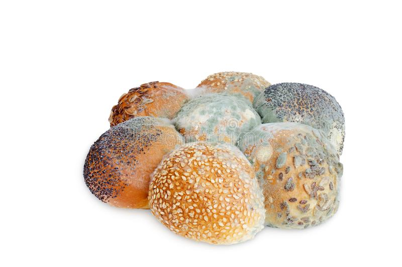 A photo of mold growing old bread with seeds isolated on white background. Food contamination, bad spoiled disgusting rotten wheat stock image