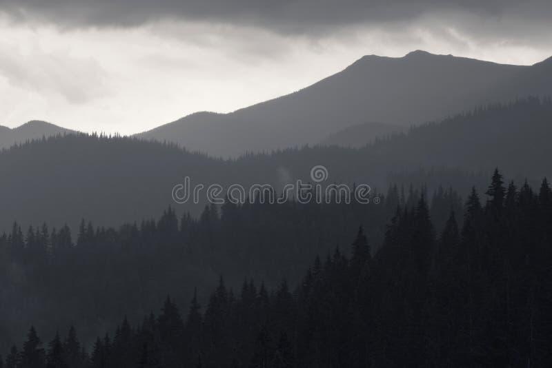 Photo noire et blanche des montagnes carpathiennes images stock