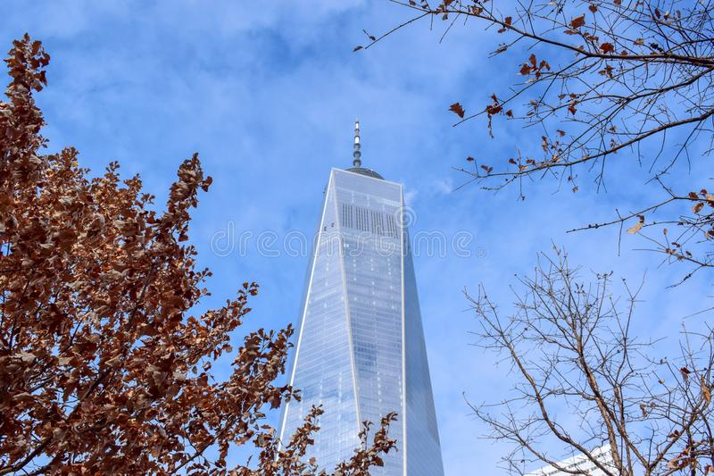 One World Trade Center in Winter. A photo of the One World Trade Center Tower aka Freedome Tower in Lower Manhattan, NY. With trees and nature around this famous royalty free stock photography