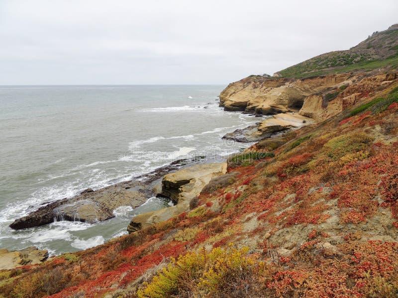 Photo panoramique aux bluffs et aux tidepools de monument national de Cabrillo Des bluffs et les tidepools côtiers sont trouvés l image libre de droits