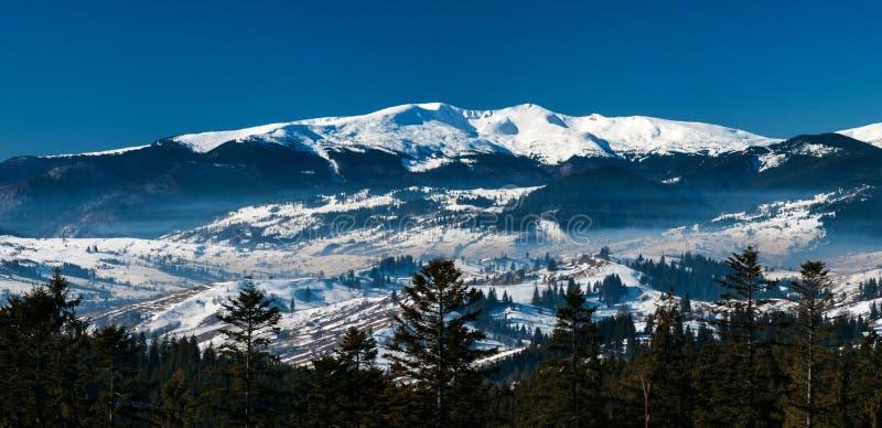 Photo panoramique de paysage merveilleux de montagne pourpre dans les Carpathiens en hiver photographie stock libre de droits