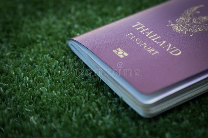 Photo of passport. Thailand passport on green grass stock images