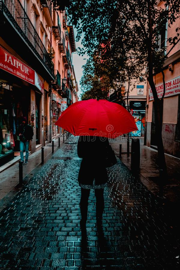 Photo of Person Holding Red Umbrella stock photo