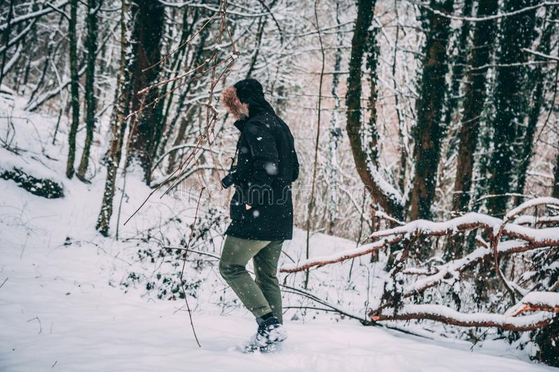 Photo of a Person in the Snowy Forest royalty free stock photos