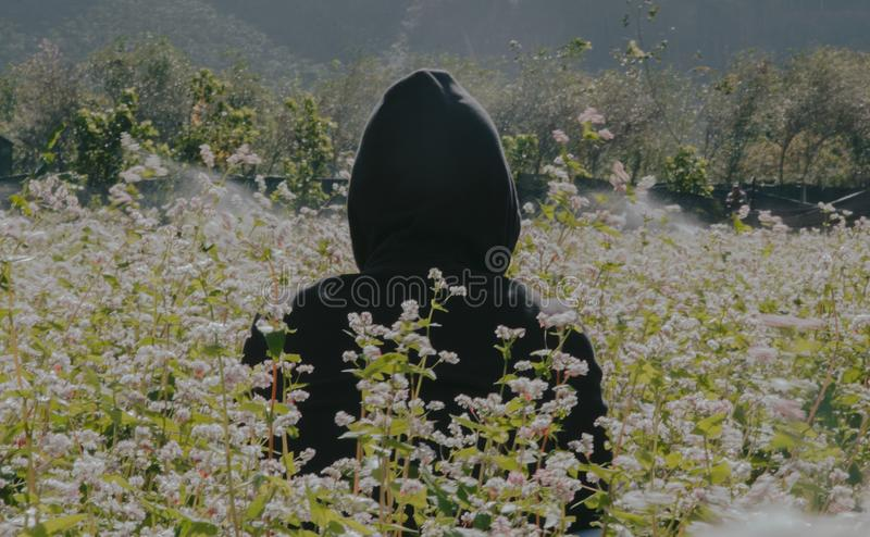 Photo of Person Wearing Black Hoodie Standing On Flower Field stock image