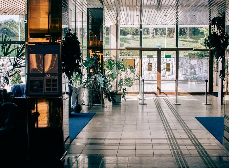 Photo of Plants Near the Glass Door stock image
