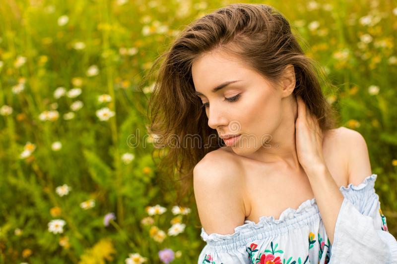 Photo of pretty brunette woman in chamomile field stock images