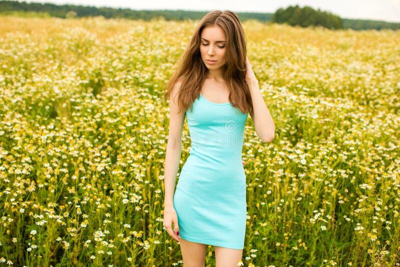 Photo of pretty brunette woman in chamomile field stock photo