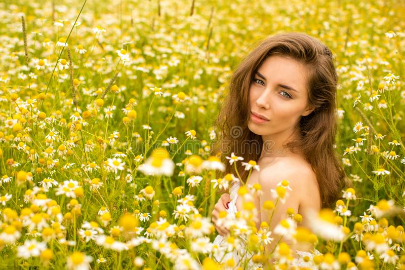 Photo of pretty brunette woman in chamomile field royalty free stock photos