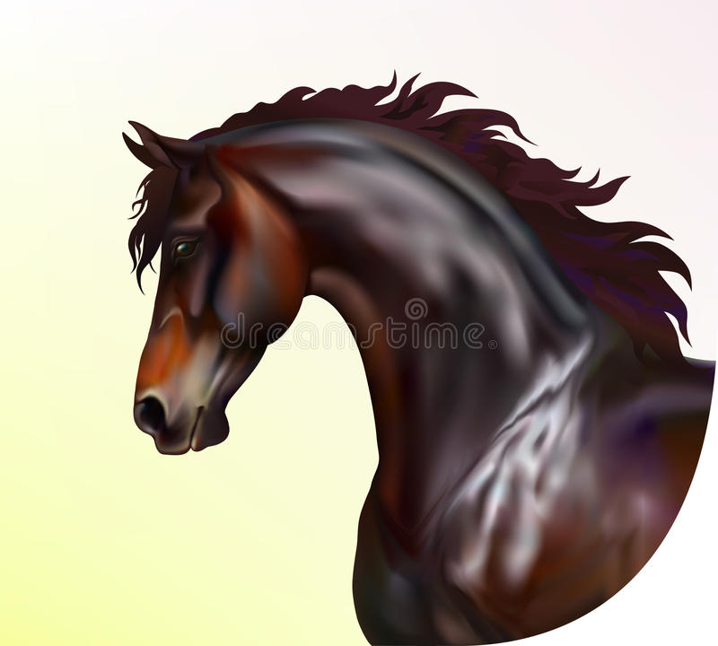 Photo realistic horse portrait. Vector photo realistic horse portrait royalty free illustration