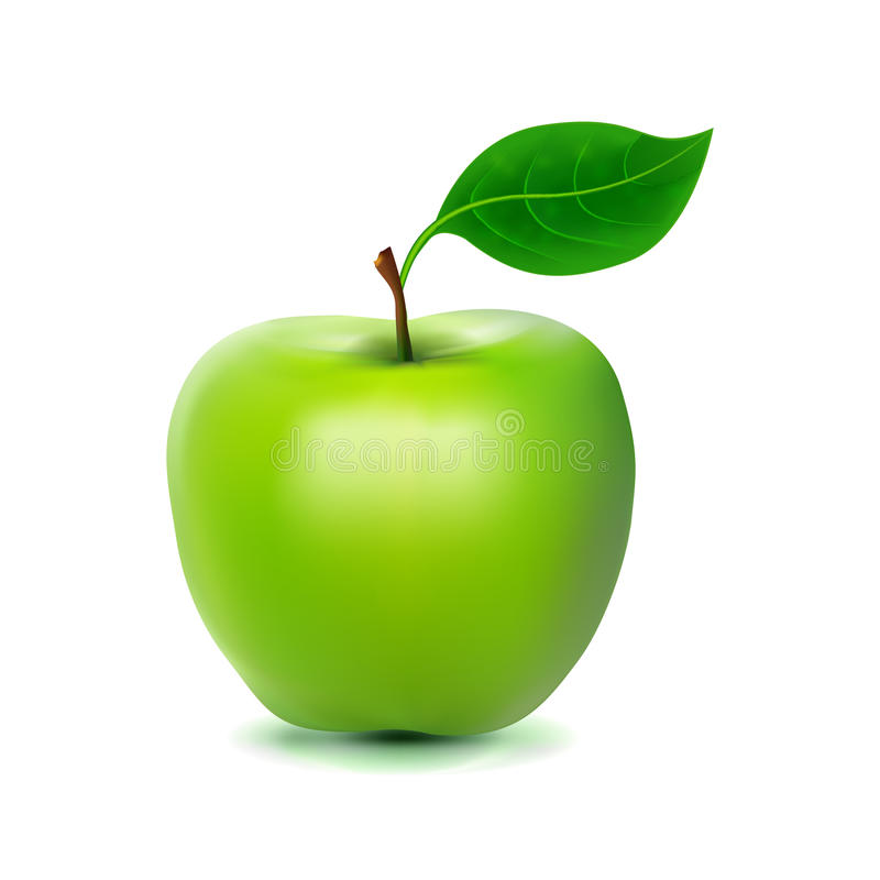 Photo-realistic image of green fresh apple. Isolated on white background stock illustration