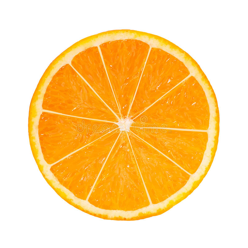Photo-realistic Orange Slice. Vector Illustration vector illustration