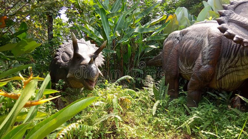 Low Angle Perspective, Photo Robot of Triceratops, Herbivora dinosaur, from north america and canada at artificial forest. Photo Robot of Triceratops, Herbivora stock photography