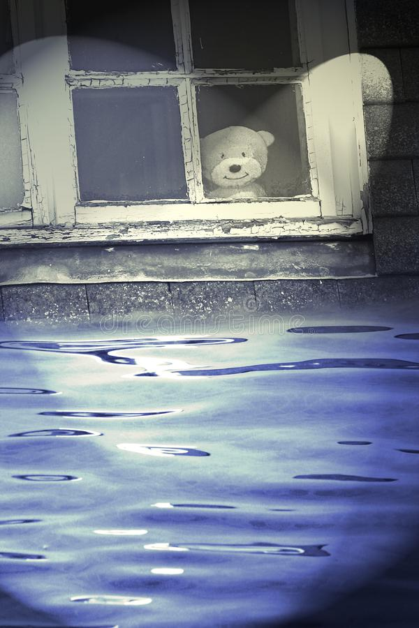 They`ve found teddy! royalty free stock photography