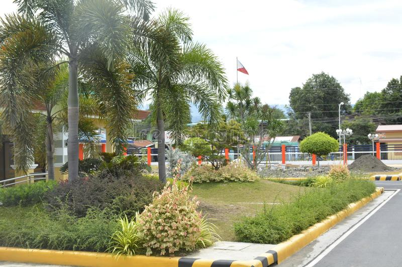 Plants in the premises of DPWH office, Digos City, Davao del Sur, Philippines stock image