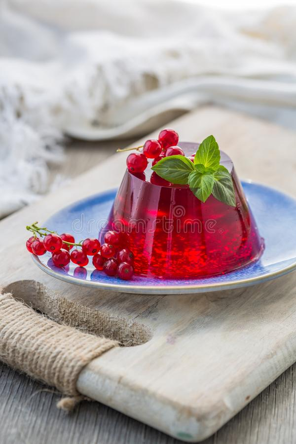 Photo of summer Jelly Dessert with red currant. Garnished with a sprig of fresh basil on light background. stock image