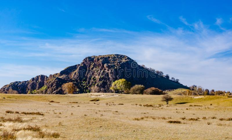 View of the grassland in deep autumn royalty free stock photo