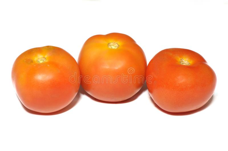 Three orange red tomatoes against a white backdrop stock images