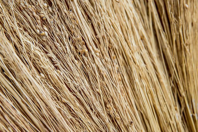The photo of texture of the dried straw royalty free stock image