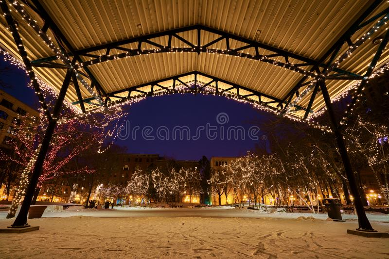 Photo of the Trees Covered with Christmas Lights royalty free stock image