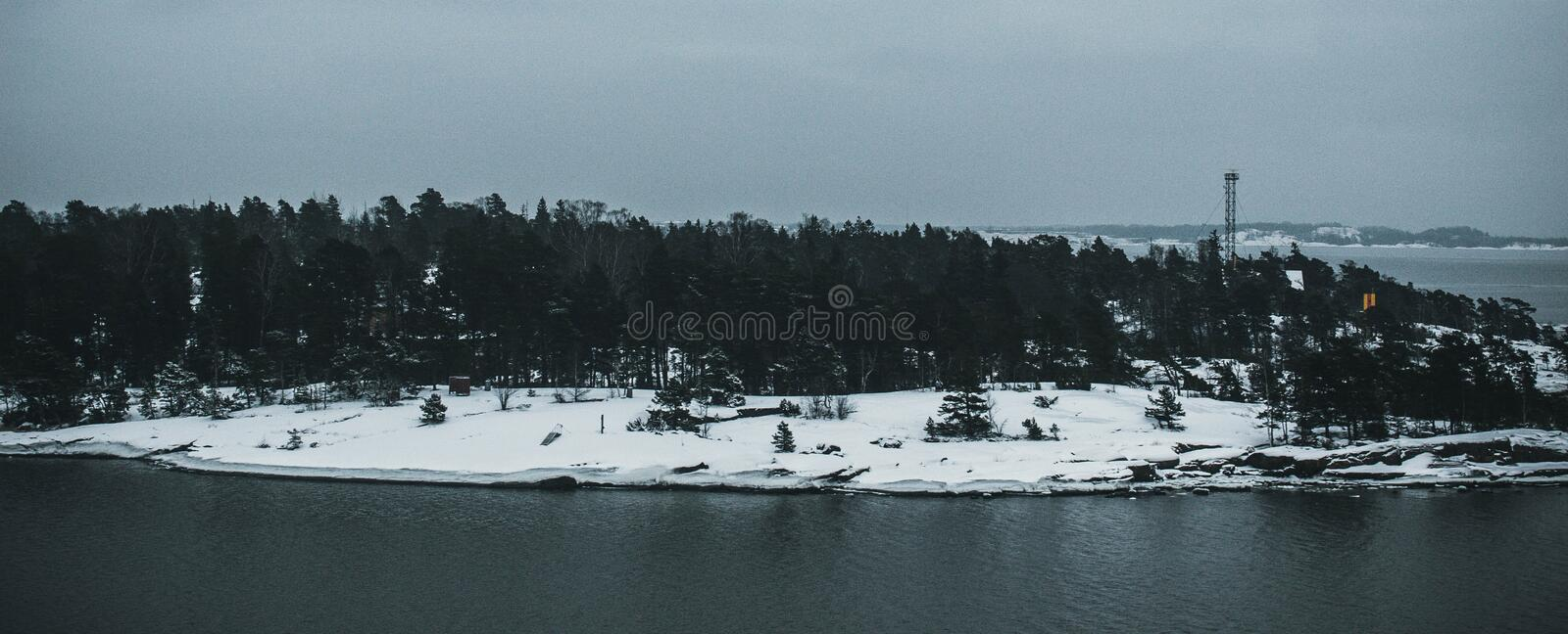 Photo Of Trees Near Body Of Water During Winter royalty free stock image