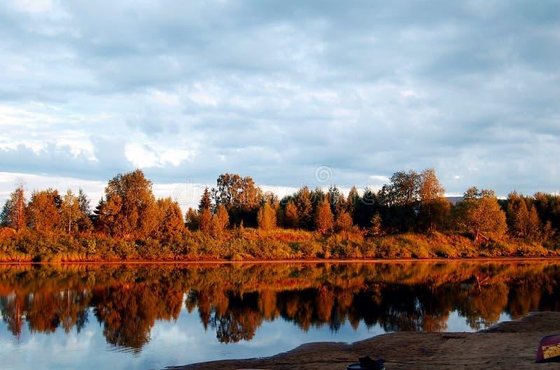 Photo Of Trees Near The Lake During Daytime Free Public Domain Cc0 Image