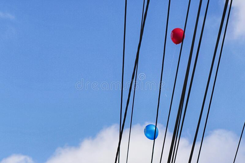 Two red and blue balloons are trapped in the cable royalty free stock photo