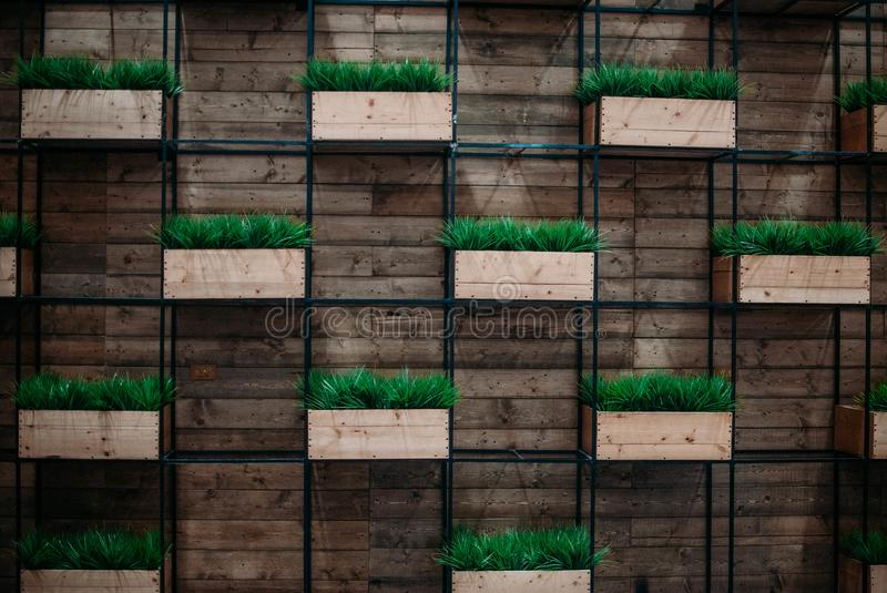 Photo of a wall with plant box for mock up and for commercial purposes. Use stock images