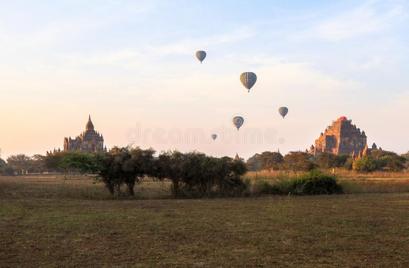 Balloons over Bagan at sunrise with horses stock images