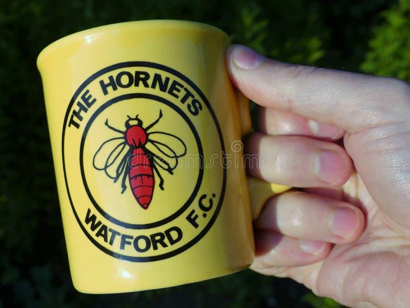 The Hornets Watford Football Club souvenir porcelain mug held in hand stock photography
