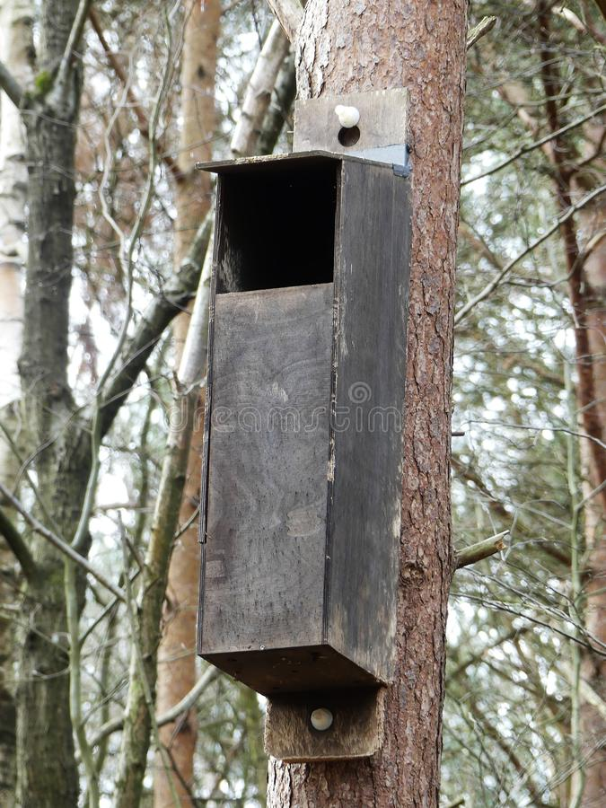 Nesting box for owls in woodland stock photo