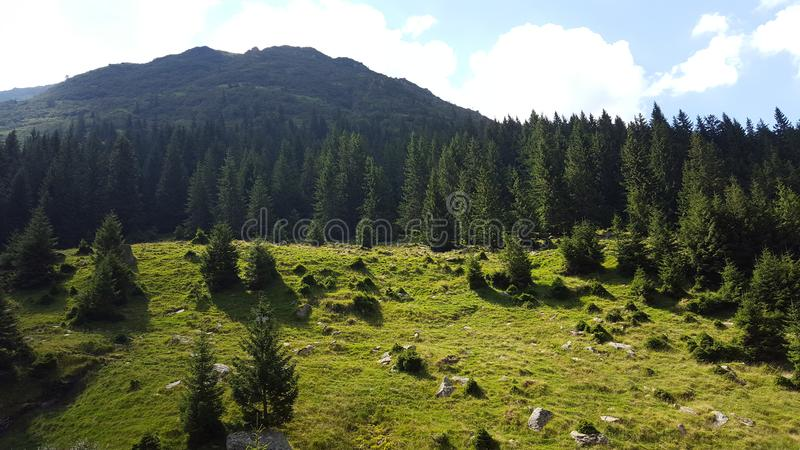 The Mountains of Nature. This photo was taken in Romania precisely at Balea Lac on a summer spendthrift stock image
